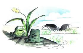 Fábula de las ranas y los toros